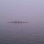 Foggy Rowing